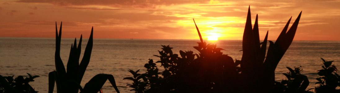 ted-antrag-sunset-malaysia